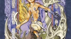 Flop 5 mangas 2011 par Bagooor