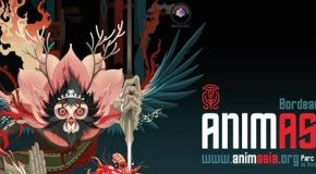 Bilan Animasia 2017